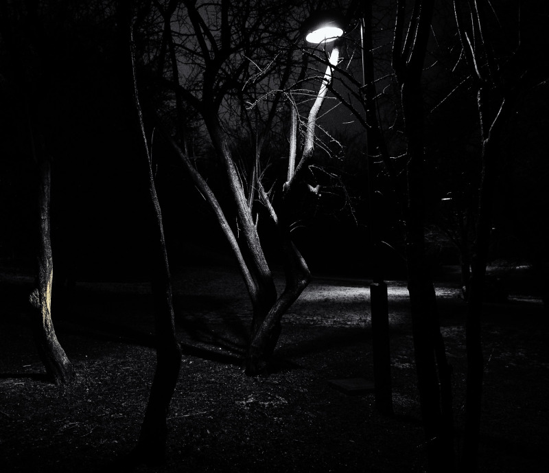 Black and light #2